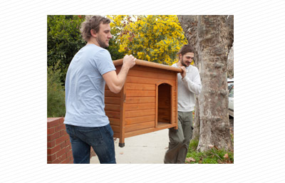 Giving away dog house on Ziilch